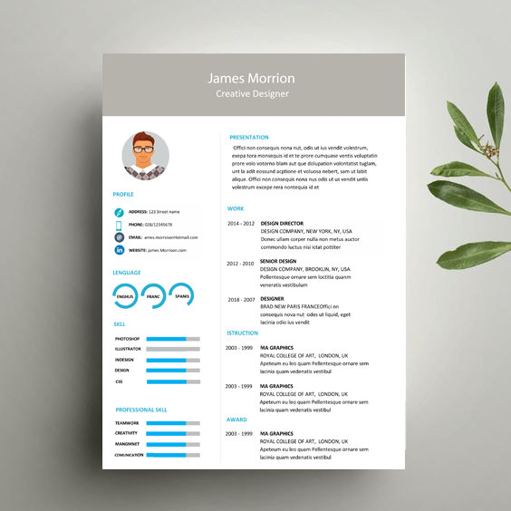 Illustrator Resume Design