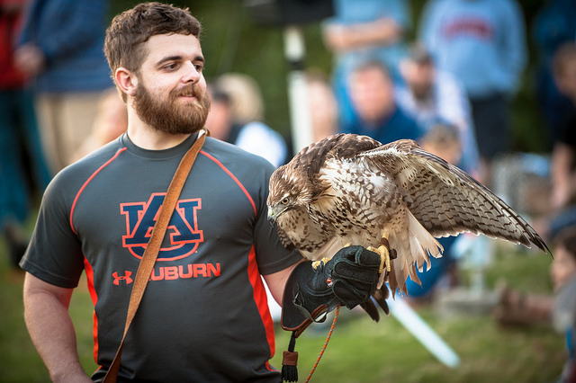 Auburn Eagle With Trainer